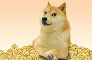Заработать Dogecoin.